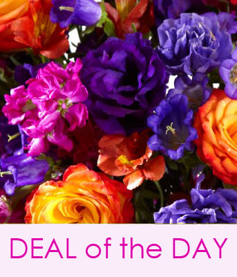 Deal of the Day Bouquet Designers Special