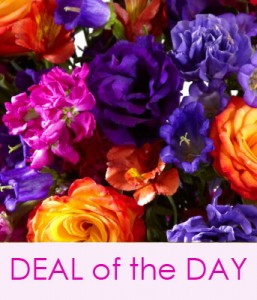 deal of the day flower special