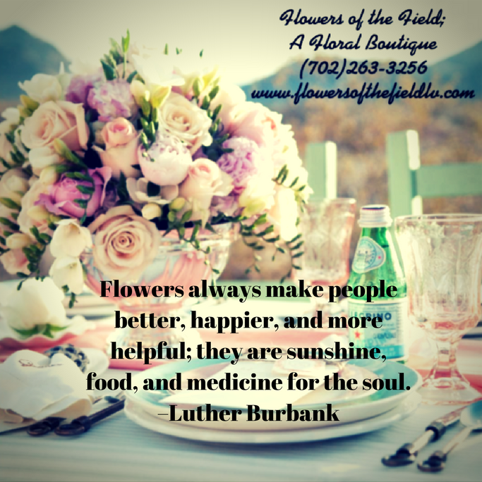 5 Happiness Quotes about Flowers - Flowers of the Field Las Vegas