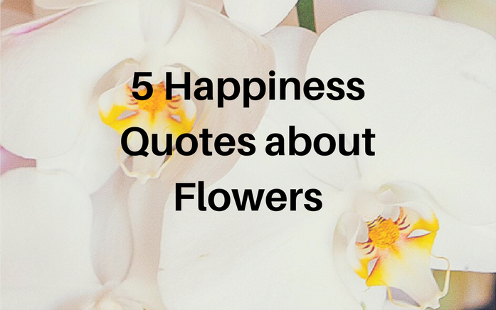 Affordable Their Beauty And Color Help Brighten Peopleus Days Make Any Room Look Beautiful Here Are Happiness Quotes About Flowers With Flower