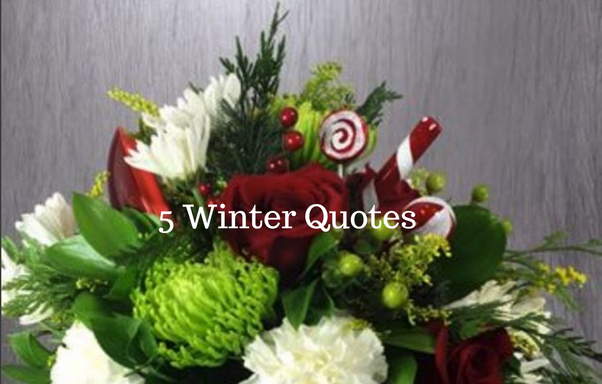 5 Winter Quotes About Nature Flowers Of The Field Las Vegas